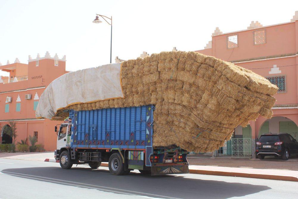 Marruecos es un país en el que aún te puedes encontrar sorprendentes imágenes en cada rincón.